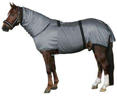 Horse Guard Ekseemaloimi
