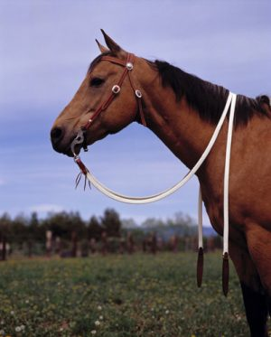 Nylon OHjat Double Diamond Flat Waxed Nylon Split Reins