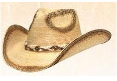 Olkihattu Alamo Palm Hat Hondo Crown