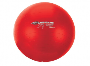 Activity Ball Stacy Westfall Large