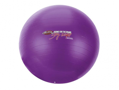 Activity Ball Stacy Westfall Small